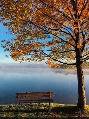 lake-983926_1920