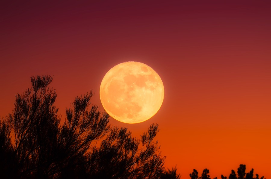 "Full ""Harvest"" Moon in Aries"