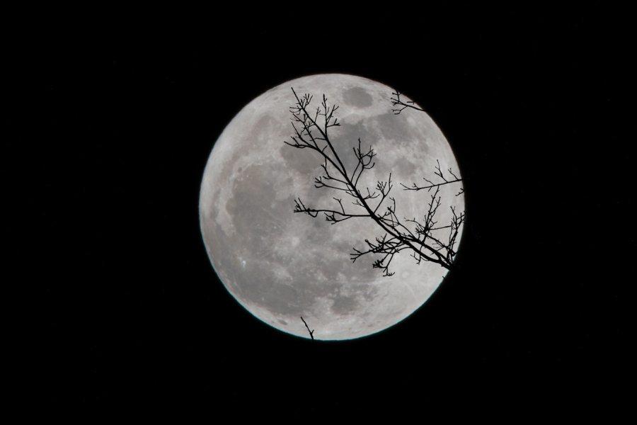 A Dark Moon forDecember